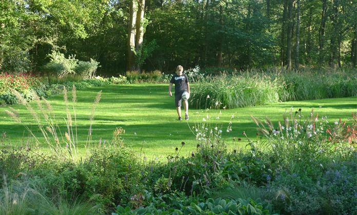 wilde tuin grassen